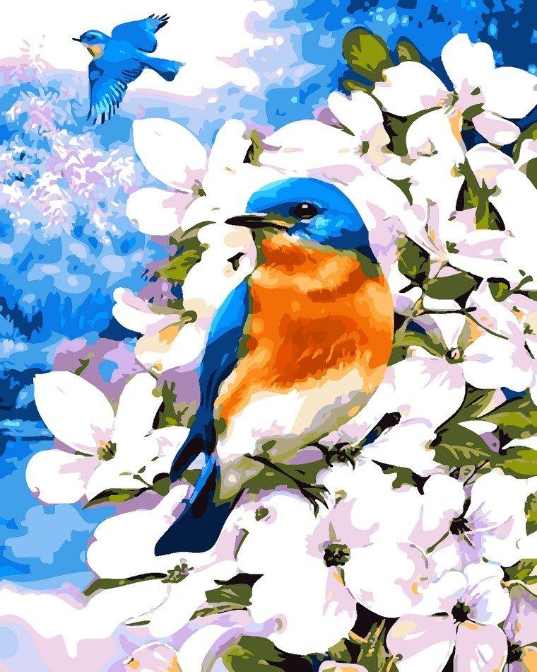 Раскраска по номерам Птичка на яблоневой ветке - VseTak ...