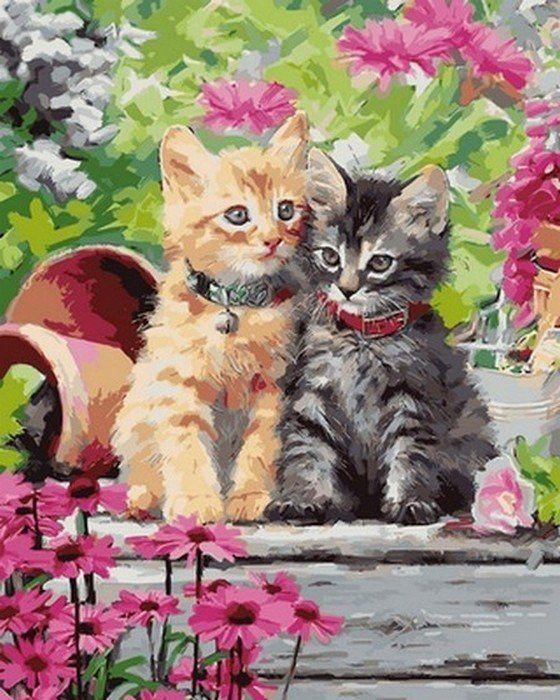 Раскраски по номерам Котята в саду - VseTak— интернет ...