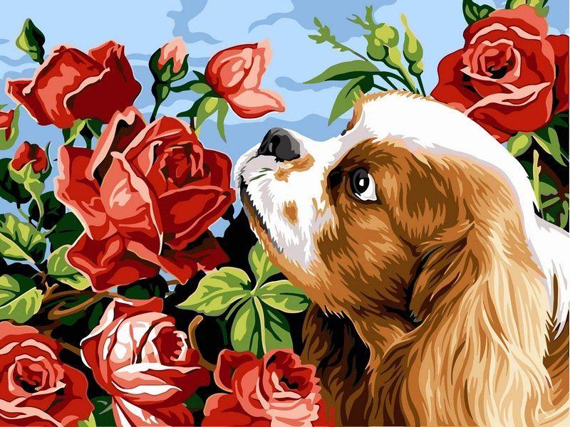 Свадьба, собачка с цветами картинки для детей