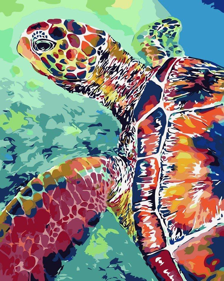 Раскраска по номерам Радужная черепаха - VseTak— интернет ...