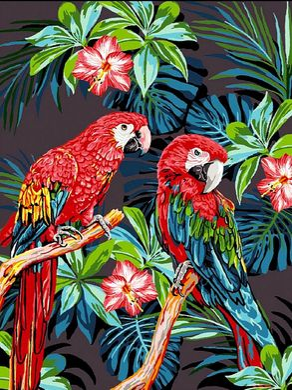 Разрисовка по номерам картина Красочные попугаи - VseTak ...